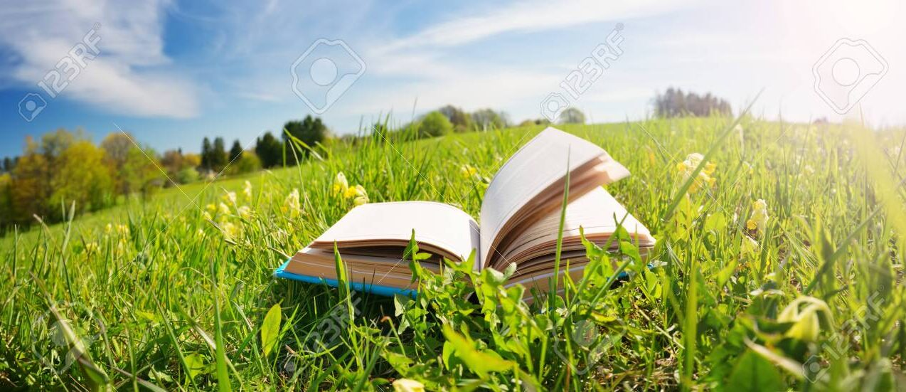 129789408-open-book-in-the-grass-on-the-field.jpg